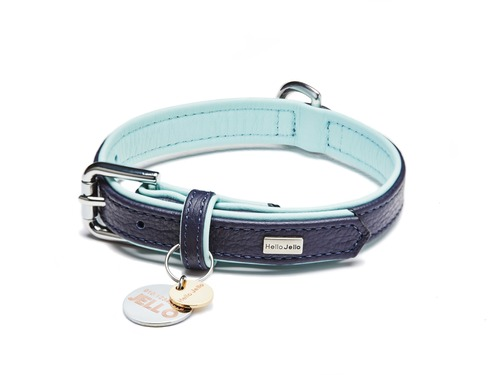 [COLLAR] PALETTE - NAVY/MINT