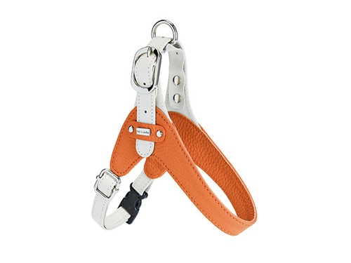 [HARNESS] PALETTE - ORANGE/WHITE