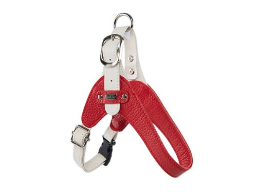 [HARNESS] PALETTE - RED/WHITE